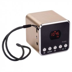EMGO TR-533G USB soundbox zlatá